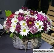 Sepette Kır Çiçekleri