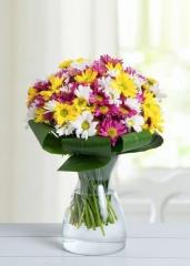 Cam vazoda Kır Çiçeği